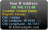 IP Address Widget